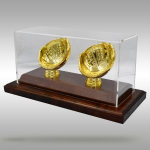 Gold Glove Baseball Case - 2 baseballs